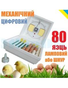 Инкубатор Квочка МИ-30-1-Е (механический, 80 яиц, цифровой регулятор, ламповый или теплошнур) - фото