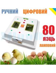 Инкубатор Квочка МИ-30-1 (ручной, 80 яиц, цифровой регулятор, ламповый) - фото