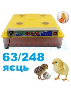 Инкубатор DZE-63/248 (автоматический с переворотом на 63/248 яиц) - фото