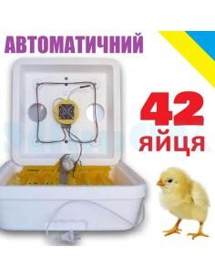 Инкубатор Веселое семейство-2ВПT (автоматический, 42 яйца, тэновый) - фото